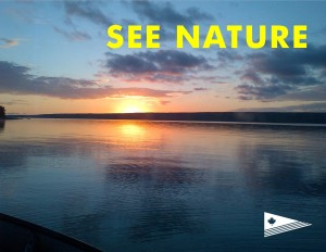 see_nature